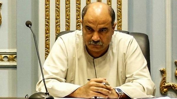 النائب رائف تمراز، وكيل لجنة الزراعة والرى بمجلس النواب