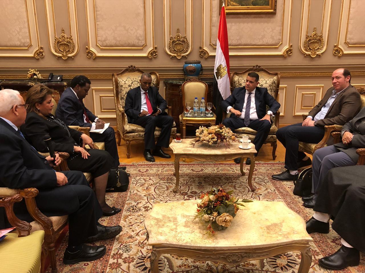 دعم العلاقات المصرية الإفريقية (4)