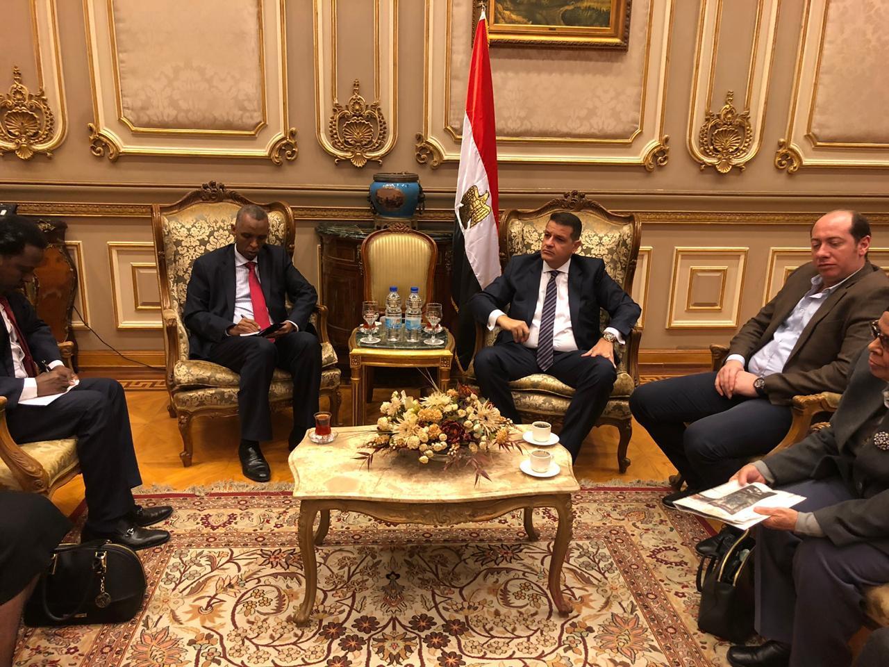 دعم العلاقات المصرية الإفريقية (3)