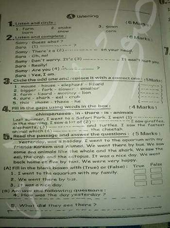 امتحانات شهادة نقل الابتدائية