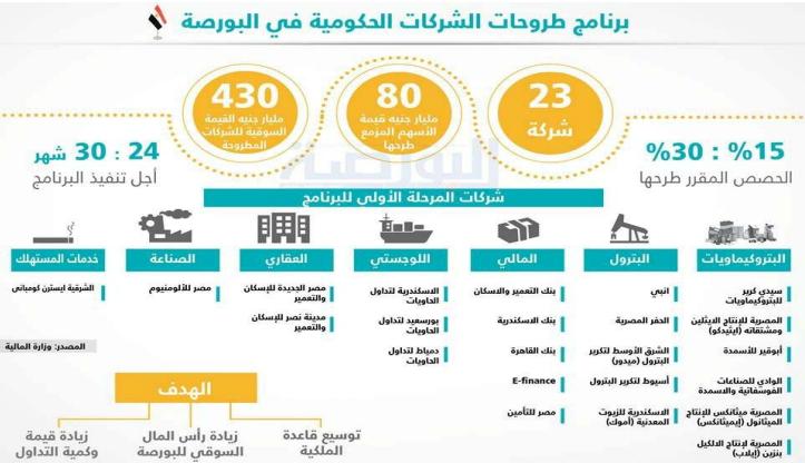 برنامج طروحات الشركات الحكومية