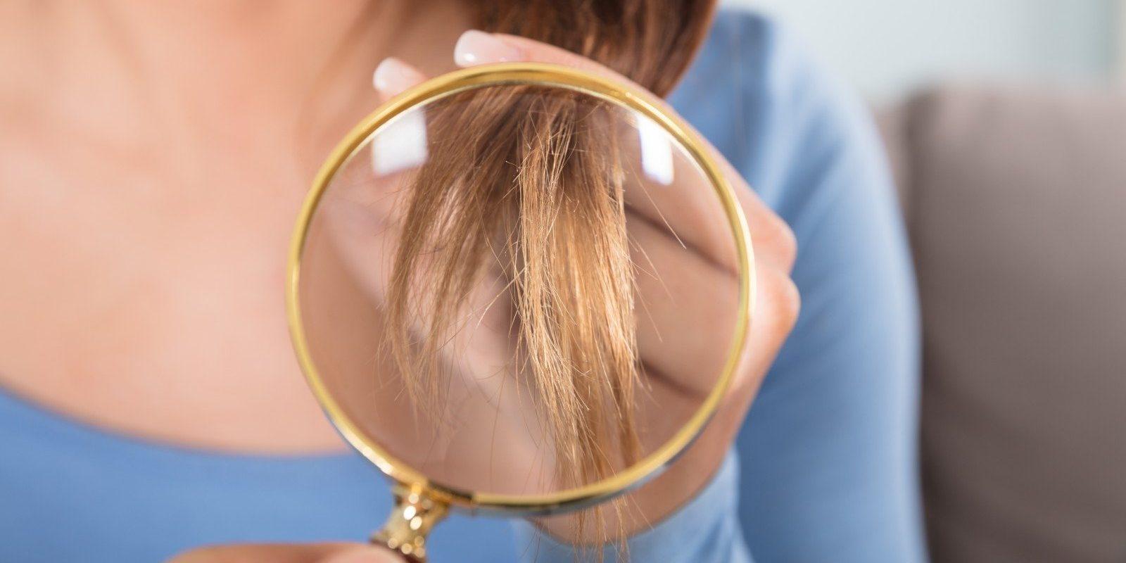 تكوين الشعر