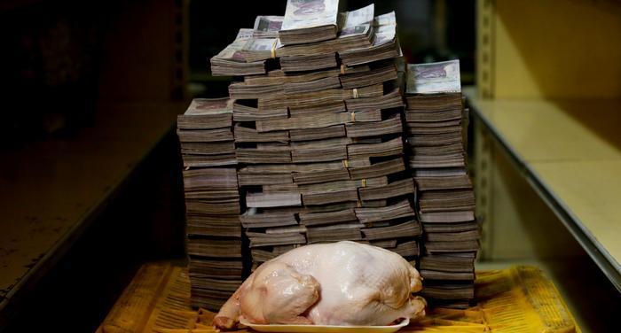 14 مليون و600 ألف سعر الدجاجة