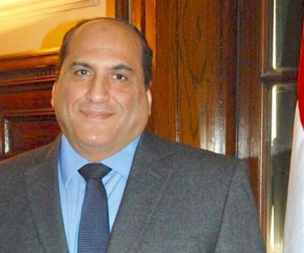 الدكتور حسن الفولى مدير الهيئة العامة للإصلاح الزراعى