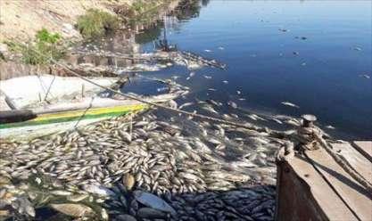 تلوث النيل ومصادر المياه