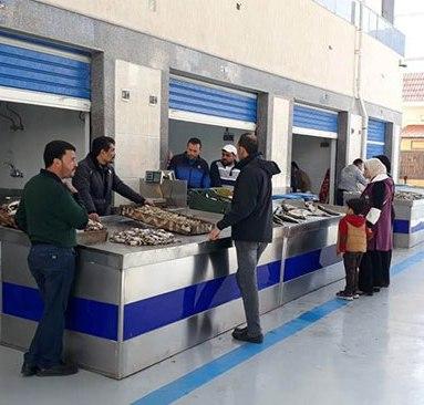 53405-سوق-الأسماك-الجديد-بمحافظة-بورسعيد--(4)