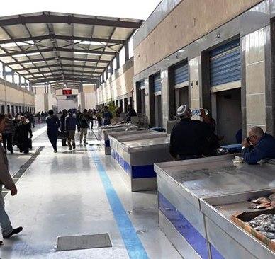 62180-سوق-الأسماك-الجديد-بمحافظة-بورسعيد--(13)