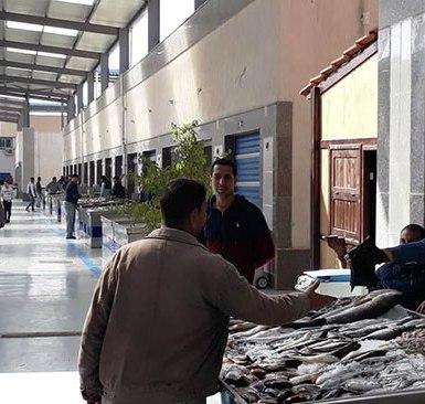 60345-سوق-الأسماك-الجديد-بمحافظة-بورسعيد--(5)