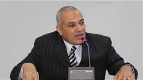 دكتور عبدالعزيز السيد رئيس شعبة الثروة الداجنة بالغرفة التجارية