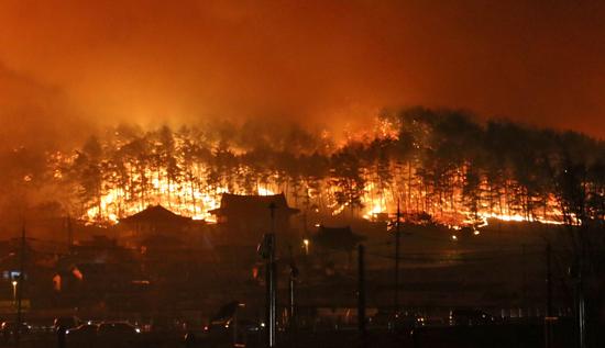 حريق هائل فى شمال كوريا الجنوبية (8)