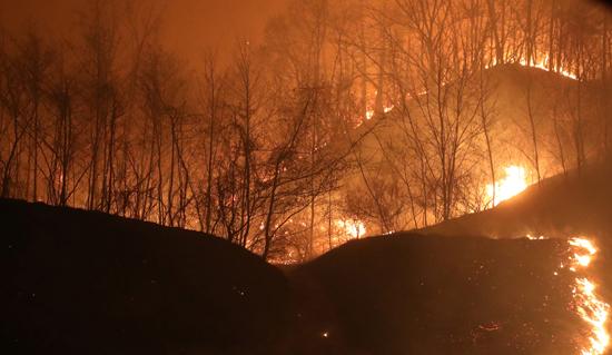 حريق هائل فى شمال كوريا الجنوبية (4)
