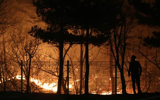 حريق هائل فى شمال كوريا الجنوبية (7)