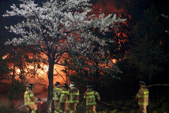 حريق هائل فى شمال كوريا الجنوبية (2)
