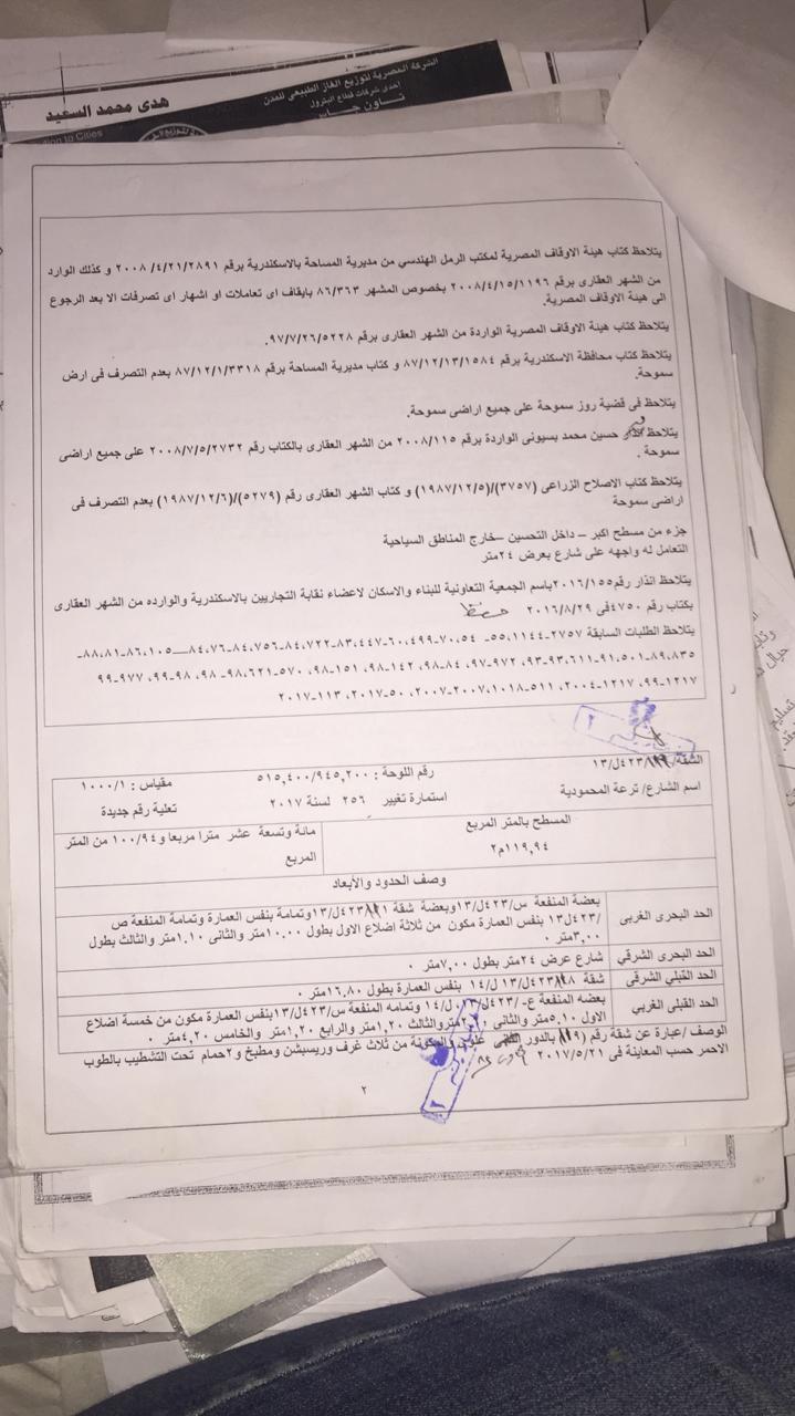 أزمة مشروع سيتي بالاس بالإسكندرية (90)