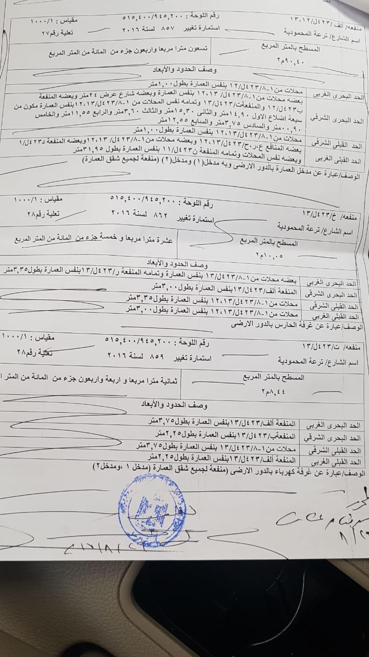أزمة مشروع سيتي بالاس بالإسكندرية (44)