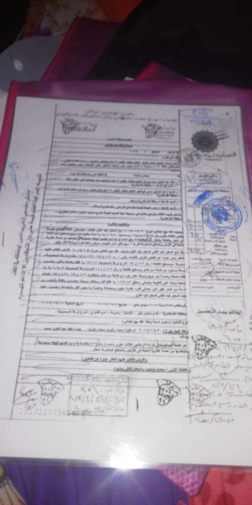 أزمة مشروع سيتي بالاس بالإسكندرية (135)