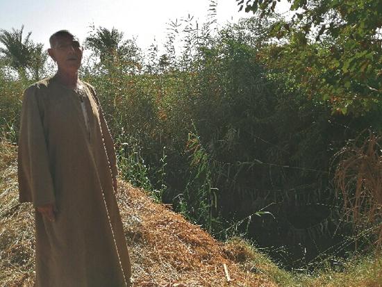مزارع بجوار مكان القاء ماكينته فى الترعة