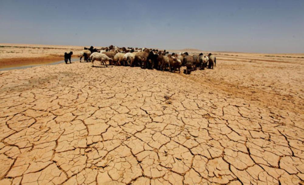 التصحر يزحف على الأراضى الزراعية