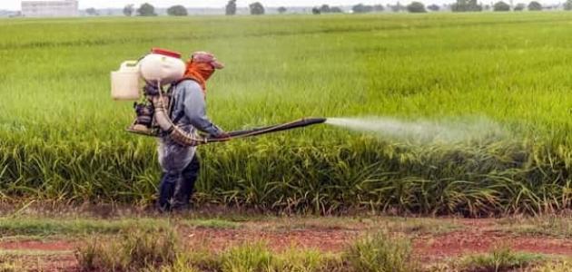 رش المبيدات لحماية النبات والمحاصيل