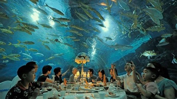 بالصور.. أغرب المطاعم في العالم