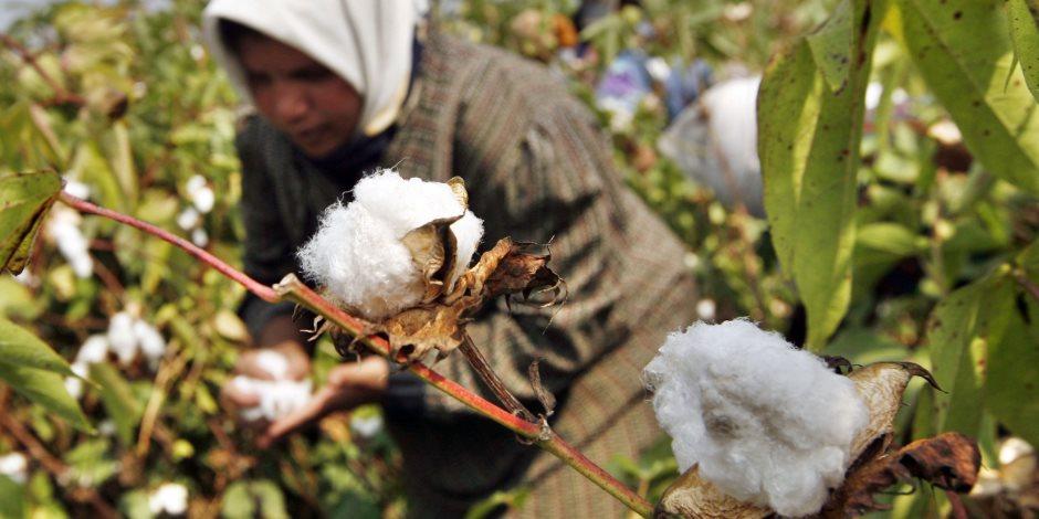 وزير الصناعة: لابد من التوسع في الاستثمار الزراعي لتوفير احتياجاتنا