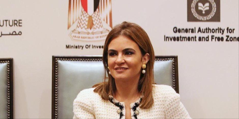 """وزير الاستثمار"""": الاستثمارات القطرية في مصر محمية والدولة تحترم تعاقداتها"""