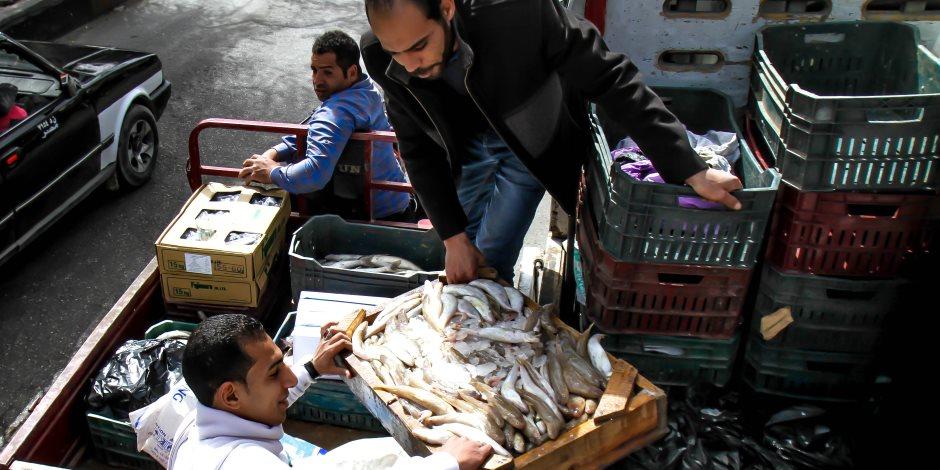 أسعار السمك اليوم الثلاثاء 28-4-2020.. البلطي يهبط إلى 24 جنيها للكيلو