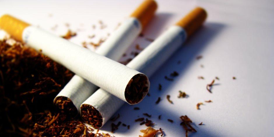 شعبة الدخان: أى زيادة جديدة بأسعار السجائر تستلزم موافقة البرلمان