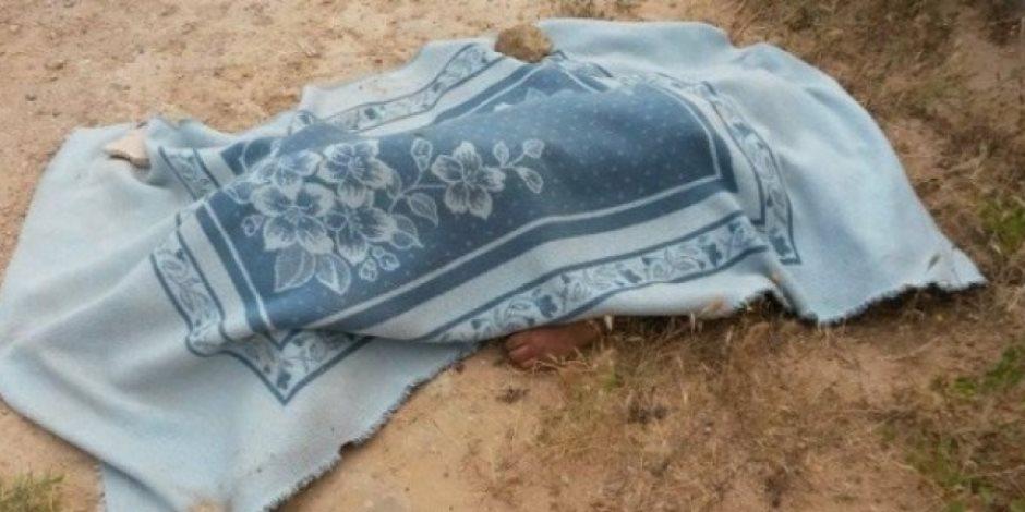 أمن الجيزة يكثف جهوده لضبط سائق الكارو بعد تسببه في مصرع طفل بالوراق