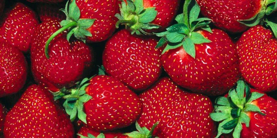 فوائد الفراولة عديدة اهمها تقوية الجهاز المناعى
