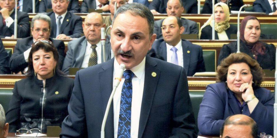 برلماني: رسائل منتدى شباب العالم أثبتت مقومات مصر غير المستغلة