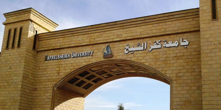 7 محاور بمؤتمر التربية النوعية جامعة كفر الشيخ أكتوبر المقبل