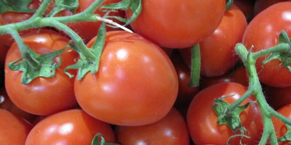 تعرف على تأثير تناول الطماطم على الحيوانات المنوية للرجل
