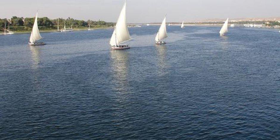 «جزر الغاب».. الكنز المفقود على ضفاف النيل (صور)