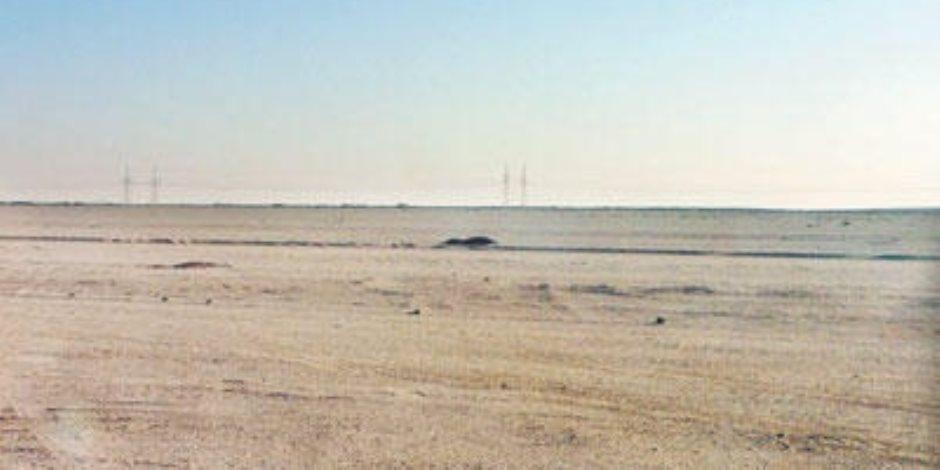 طرح المرحلة الثانية من أراضى المصانع بمدينة الأثاث بدمياط نهاية ديسمبر