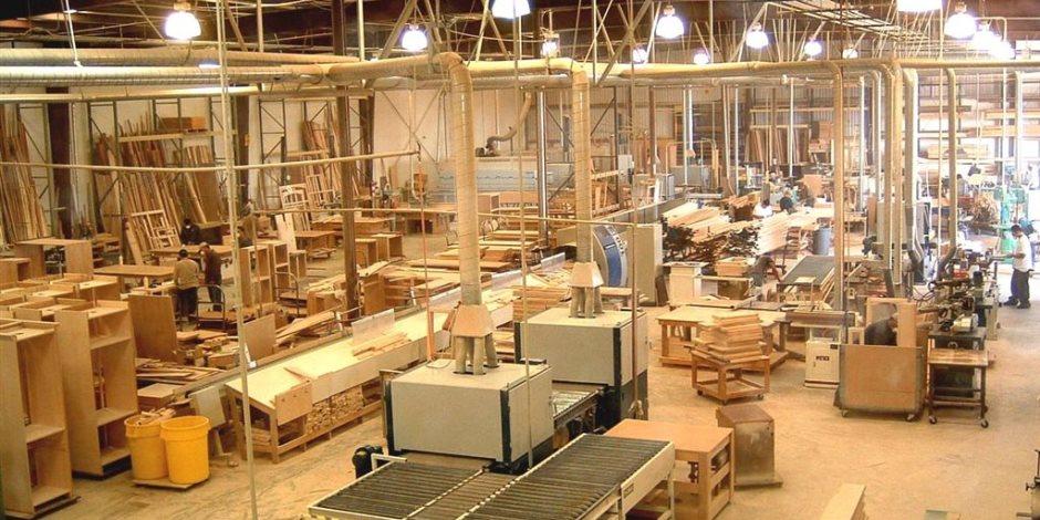 الفروع منتشرة في المحافظات كافة.. لماذا ارتفع إنتاج «تجارة الأخشاب» 200% في عام واحد؟