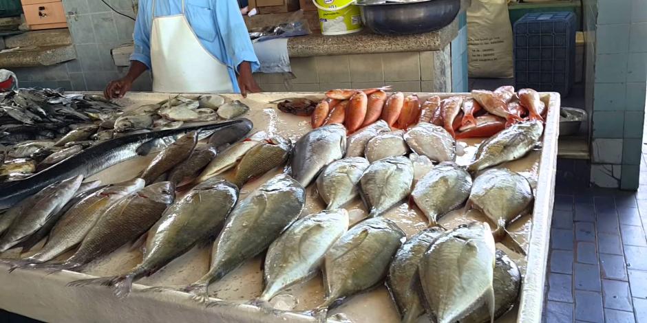 أسعار السمك اليوم الإثنين 23-3-2020.. البلطي يبدأ من 27 جنيها للكيلو