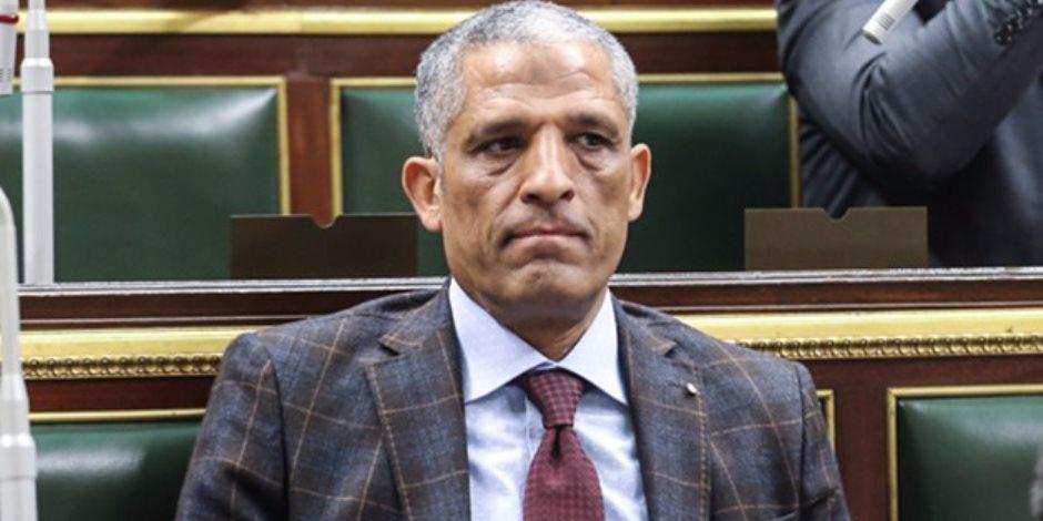 النائب محمد الحسيني VS أحمد طنطاوي.. الأول يطالب بتفعيل دور البرلمان والثاني مهدد بإسقاط عضويته