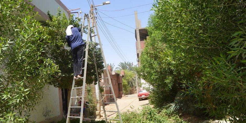 لليوم الثالث على التوالي.. رفع كفاءة النظافة بشارع النيل في الوراق