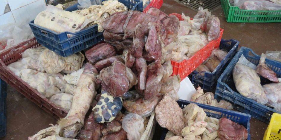 تحذيرات من الطب البيطري بعد ضبط 114 طنا وأختام مزورة.. كيف نتجنب اللحوم الفاسدة؟