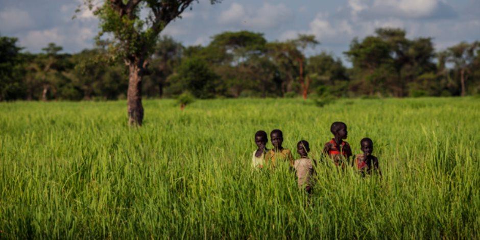 التنمية على ضفاف إفريقيا.. فرص استثمارية للقطاع الخاص في القارة السمراء