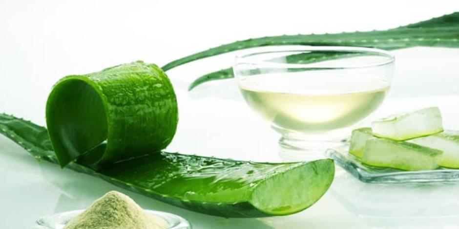 يستخدم كطريقة طبيعية لتعزز صحة الشعر والبشرة.. فوائد الصبار