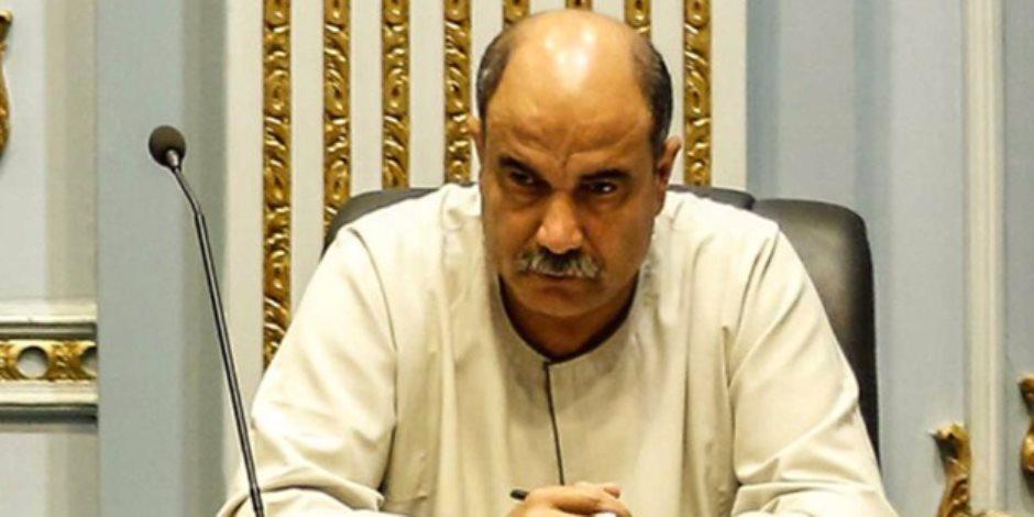 برلماني يطالب بمحاكمة سعد الدين إبراهيم بتهمة الخيانة العظمى