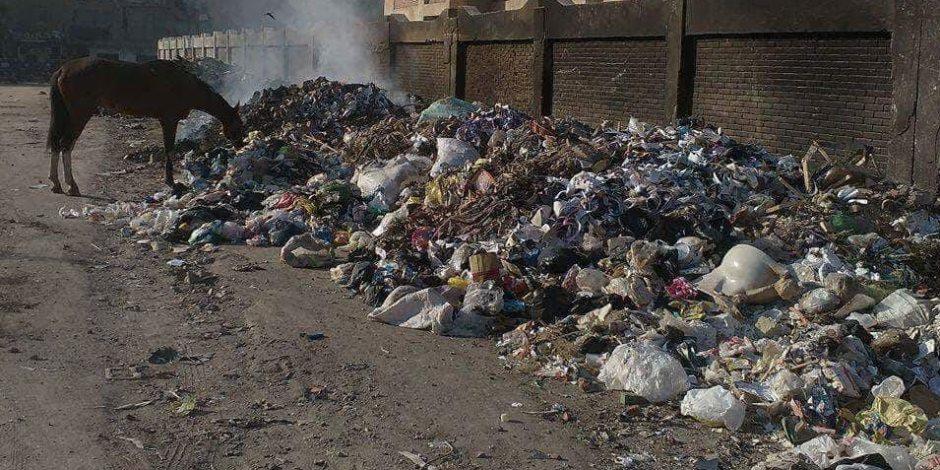 «كله كلام في كلام».. وزيرة البيئة للبرلمان: ملف القمامة مُعقد