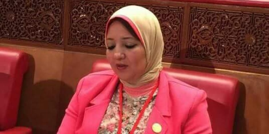 نائبة بصحة البرلمان: لعبة «الحوت الأزرق» تمثل خطر على 60% من سكان مصر
