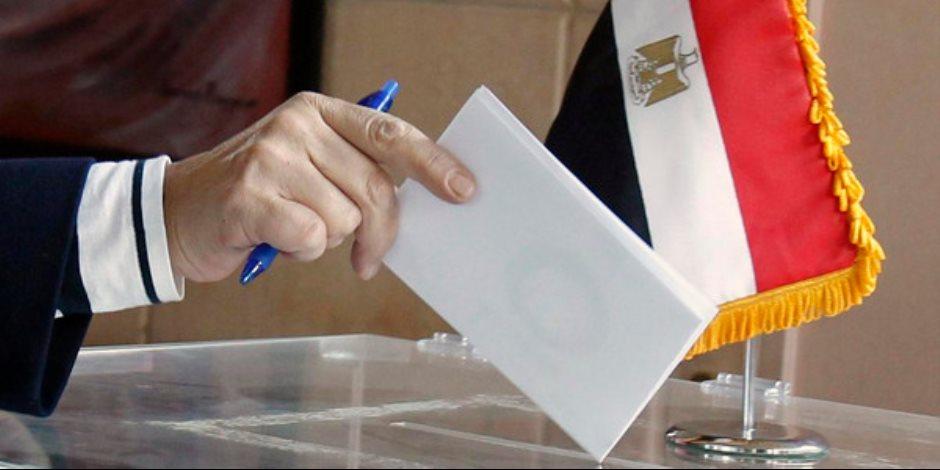 في 8 دول.. معلومات الوزراء ينشر فيديو لتصويت المصريين بالخارج
