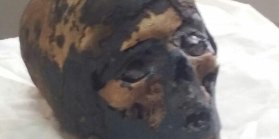 «عقبال نفرتيتي».. رأس ويدان تعود من نيويورك للقاهرة عقب تهريبها بـ91 عاما (صور)