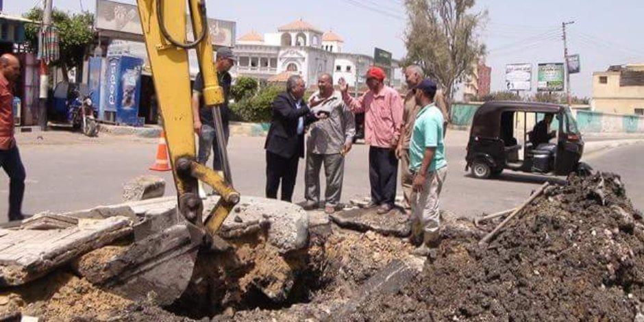أبو حمص تتجمل.. زراعة أشجار ورفع مخلفات الأتربة بالشوارع (صور)