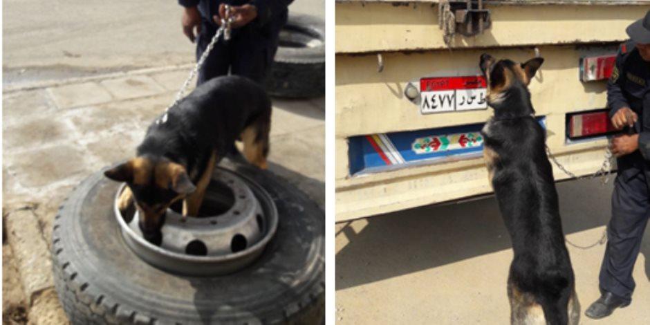 ضبط كمية كبيرة من المواد المخدرة داخل إطارات مقطورة بنفق الشهيد أحمد حمدي (صور)
