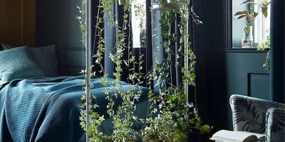 ديكورات الصيف .. نباتات خضراء تزين المكان وتلطف الأجواء